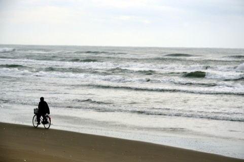 海辺をサイクリングする男